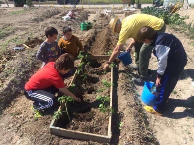 IV Premio Nacional Huertos Educativos Ecológicos