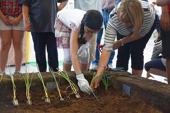 Arranca Bioterra, la feria de Euskadi de productos ecológicos, bioconstrucción, energías renovables y consumo responsable