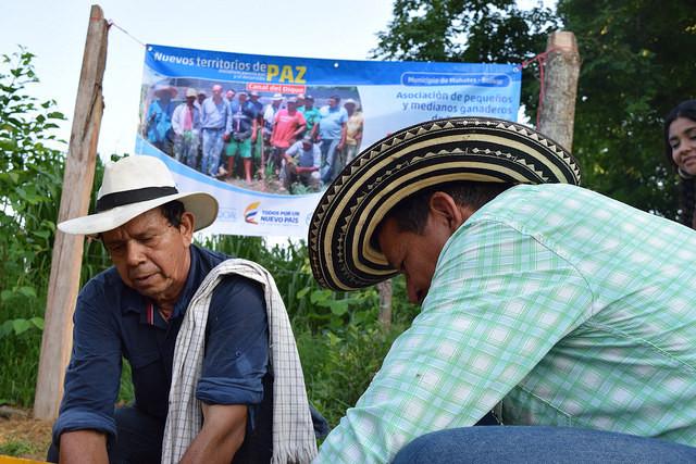 FAO y la Agencia de Desarrollo Rural de Colombia, aliadas para impulsar el proceso de paz