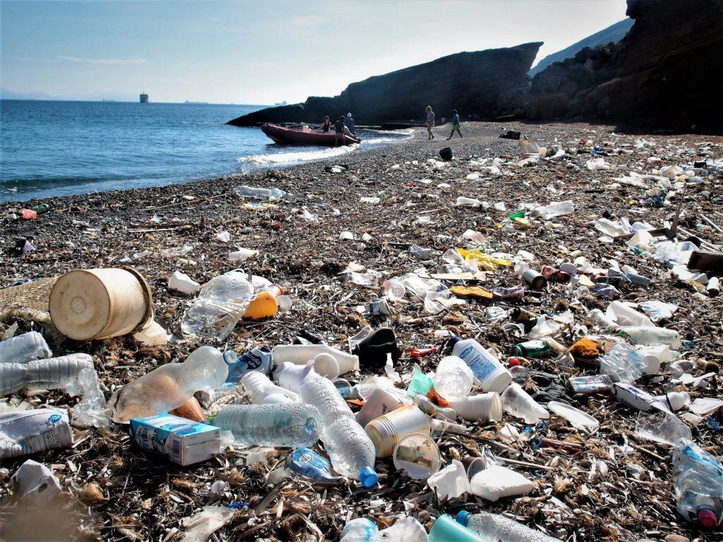 Hongos y bacterias que digieren plásticos