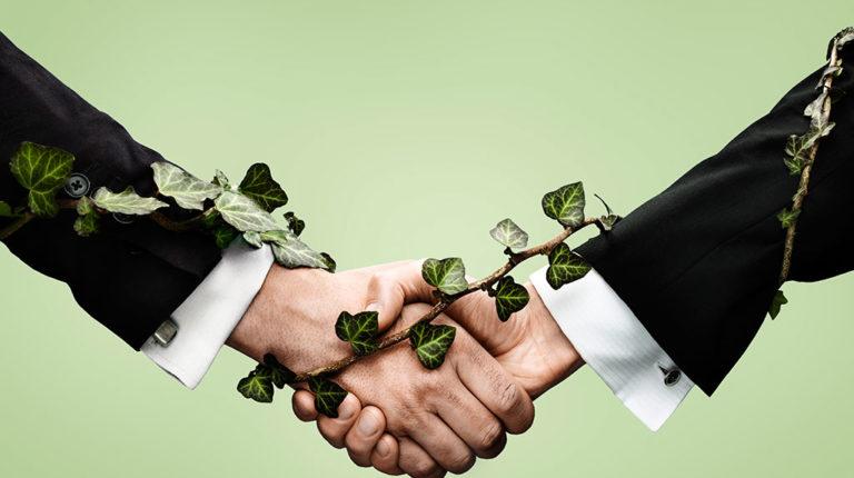 Inversión Sustentables