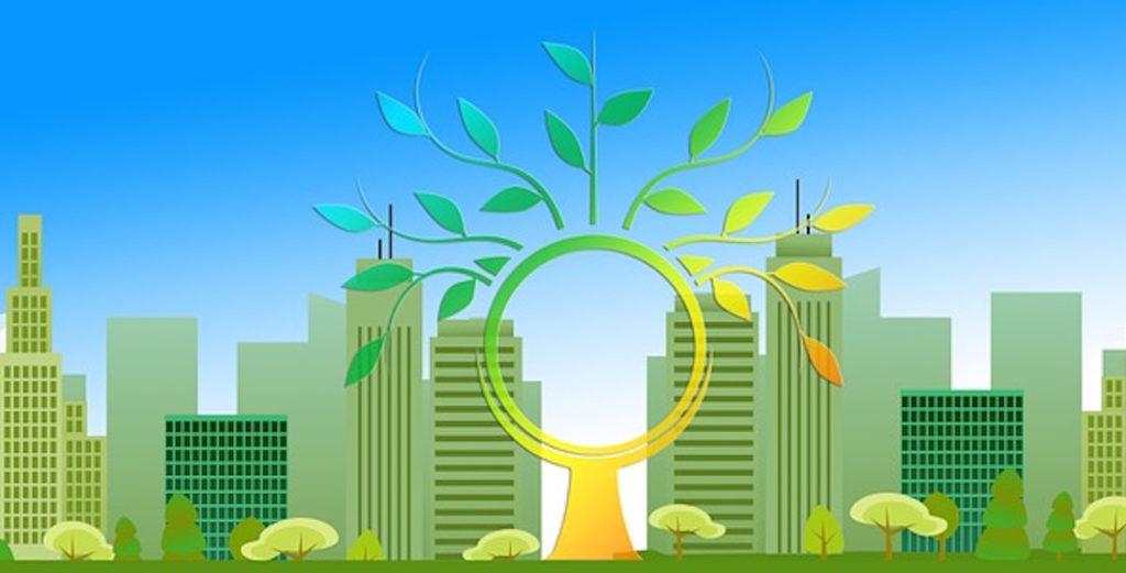 Came: concurso para cuidar el medio ambiente