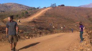 Reforest-Acción en Extremadura