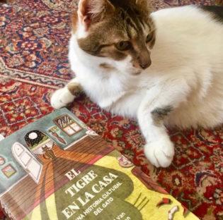 el tigre en la casa, de editorial Sigilo