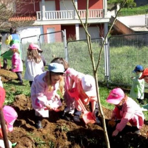 Vida Sana, Fundación Triodos y su premio Huertos Ecológicos Educativos