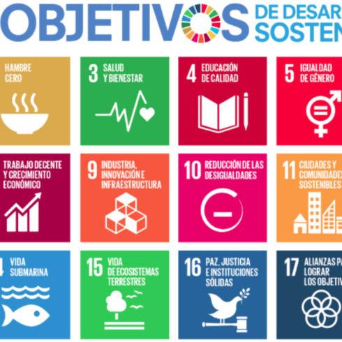 ODS: B Lab y UN Global Compact crean una plataforma de gestión