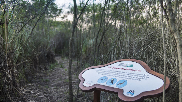En Zárate, la reserva natural de Toyota