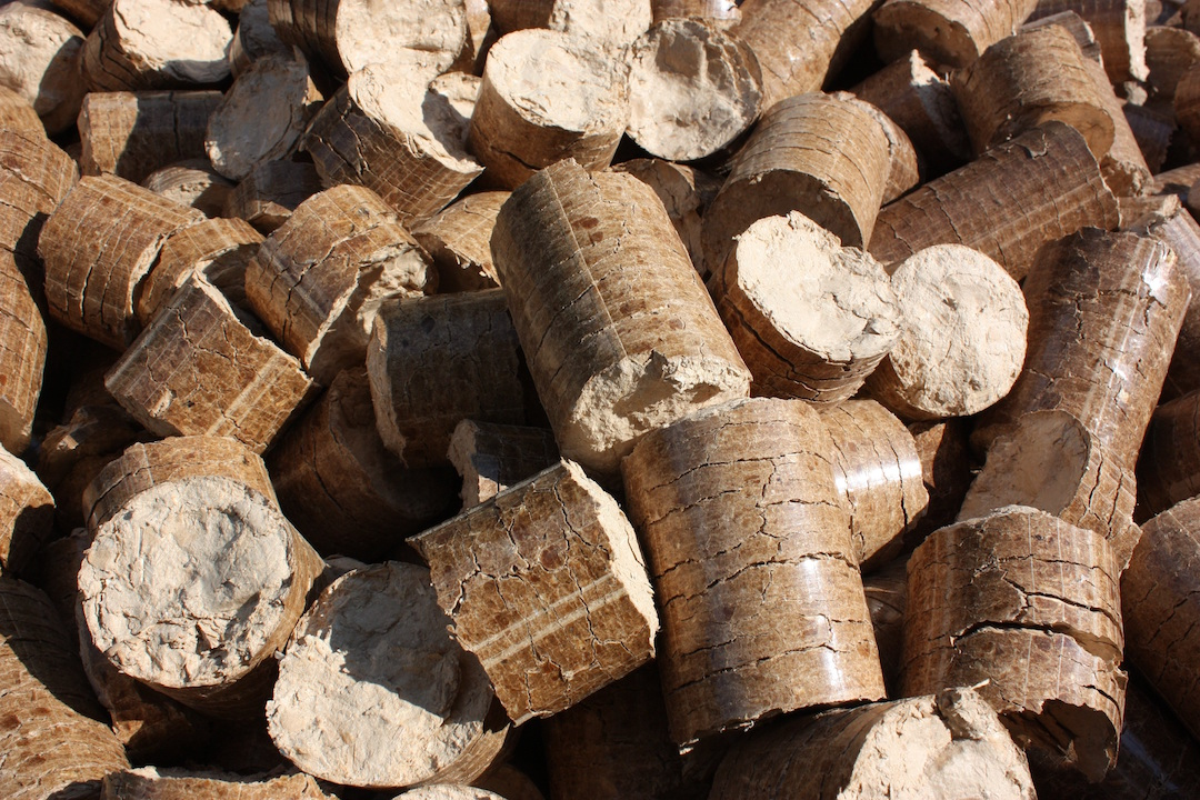 Biomasa forestal. o un negocio limpio y renovable