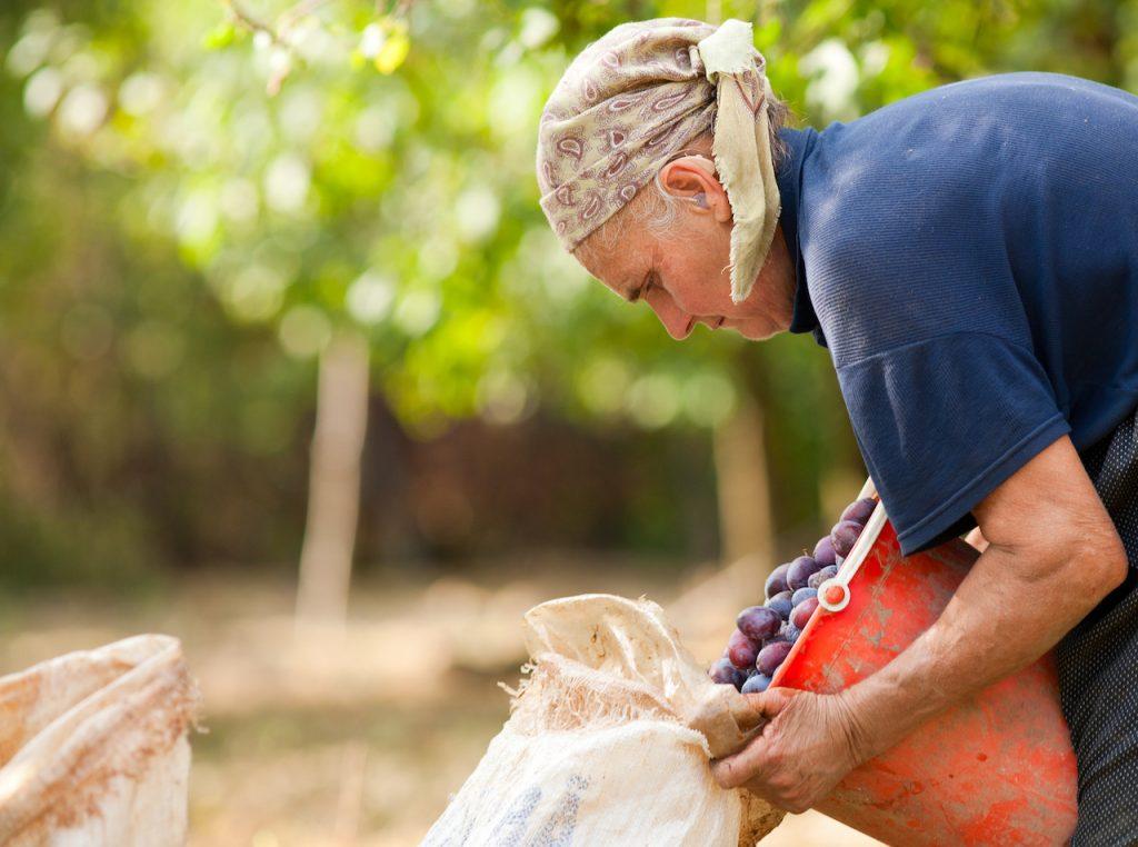 El alma de la ruralidad, muestra fotográfica con la obra de Cecilia Duarte