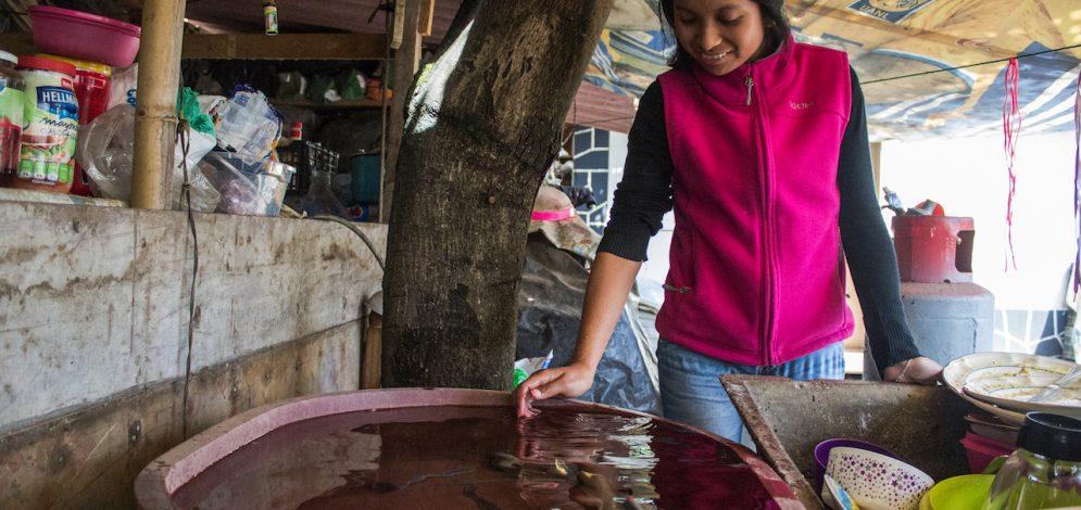 En el Día Mundial del Agua, buenas prácticas para su conservación