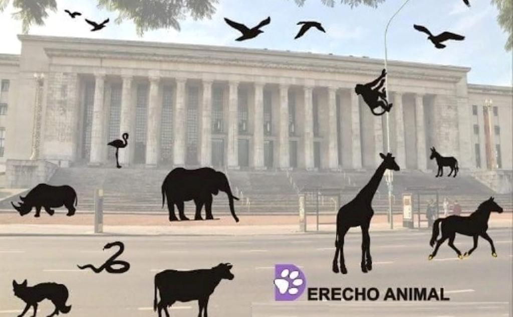 Derecho Animal en la Facultad de Derecho de la UBA