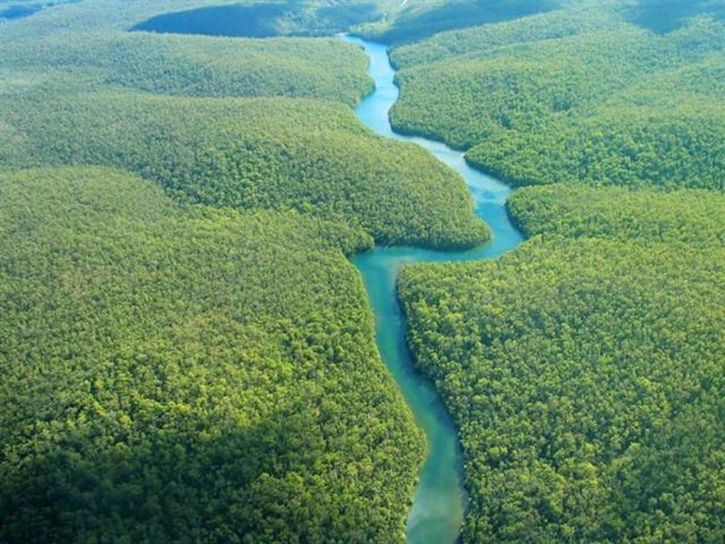 La Amazonía incendiada o el efecto dominó