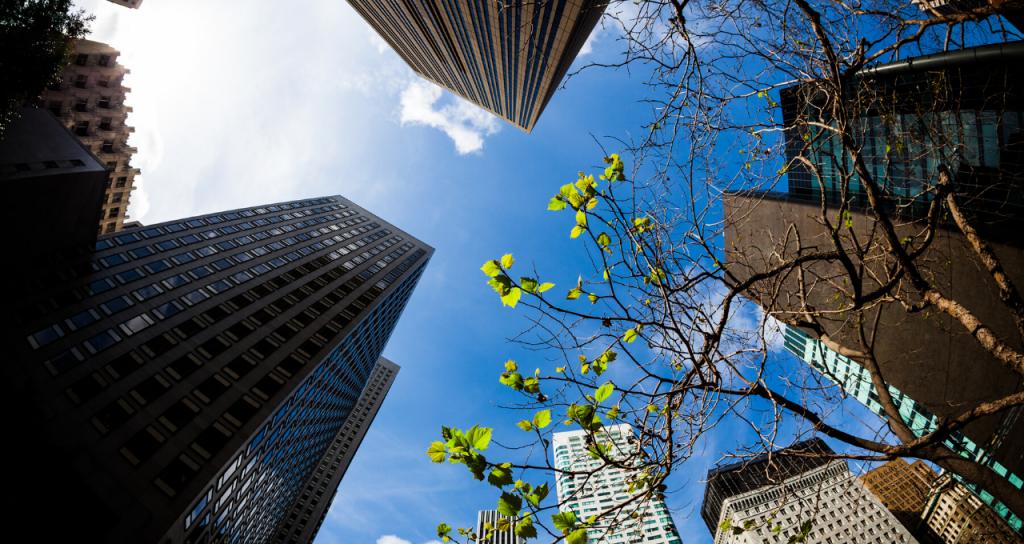 PLAC, documento de gestión de políticas municipales hasta 2030