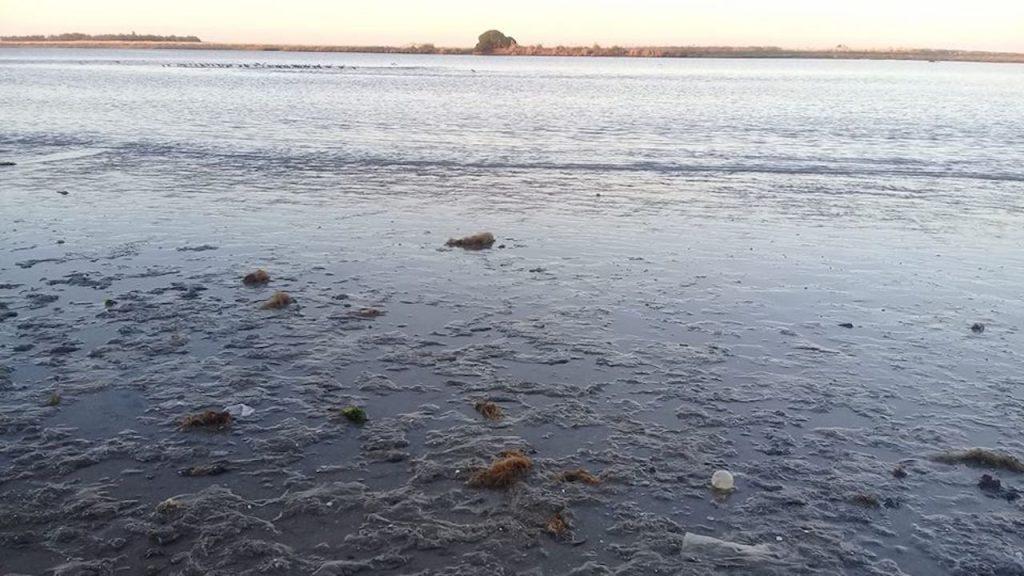 Reserva de Biosfera Parque Atlántico Mar Chiquito
