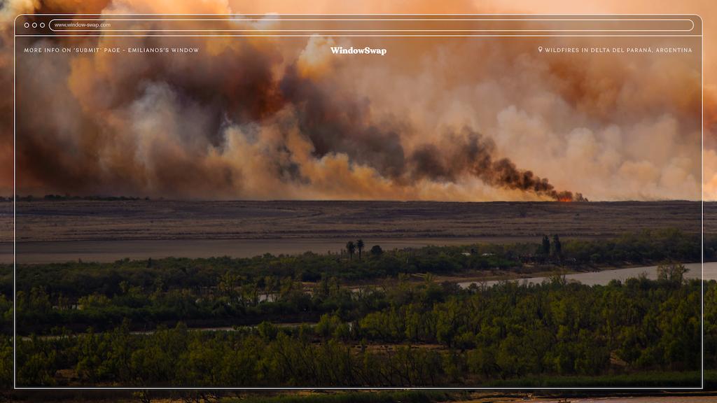 La quema de humedales en la Argentina, visibilizada a través de Window Swap por Banco de Bosques