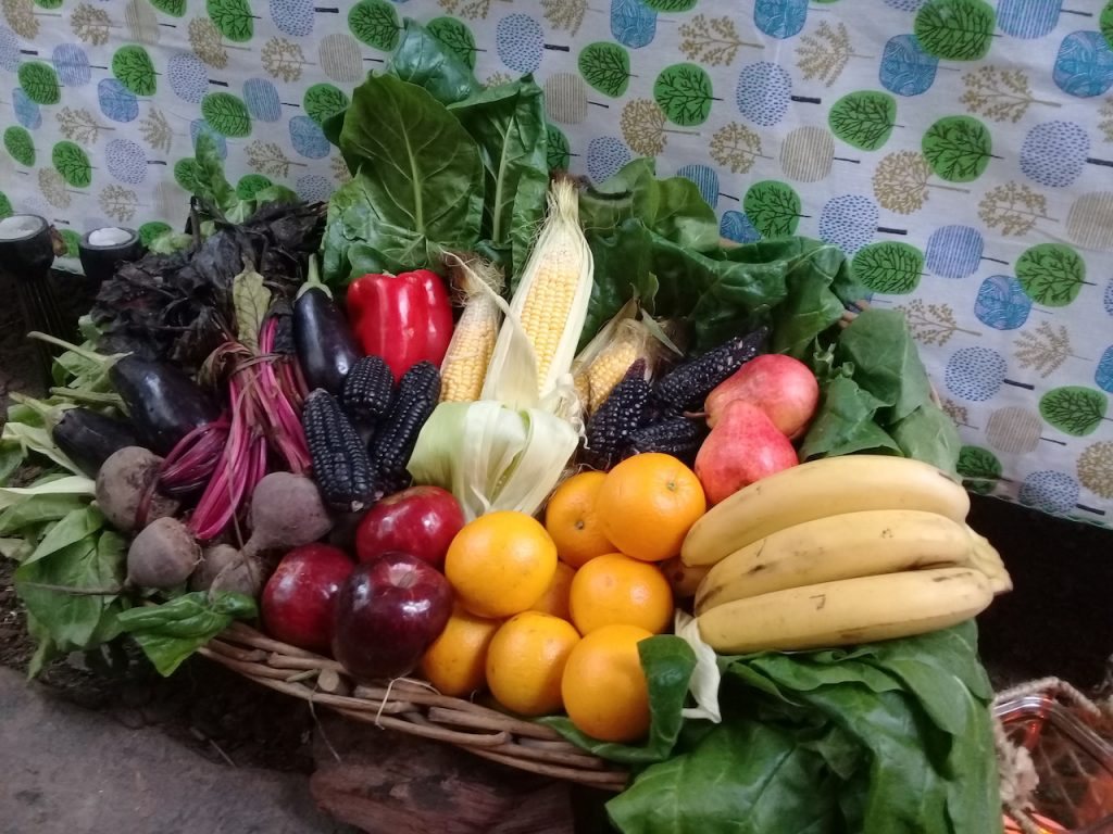 Con su web y app ComoEqulibrar, la nutricionista Celina Petrella educa y ayuda a elegir mejor los alimentos con los que nos nutrimos