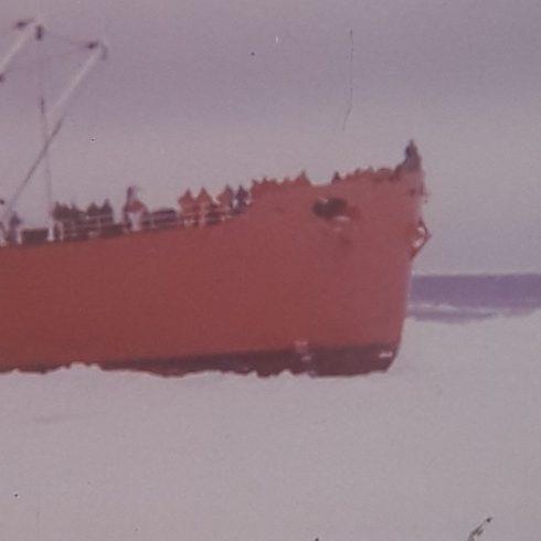 El Museo del Cine lanza su ciclo Rescate del Cine Antártico, junto con el Instituto Antártico Argentino