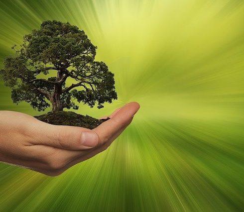 Tomás Caride habla de un mundo sostenible para las próximas generaciones