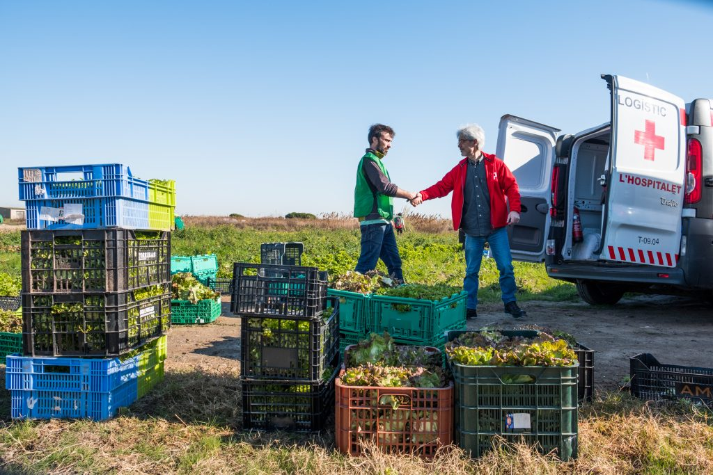 Espigoladors busca el aprovechamiento alimentario y luchas contra la exclusión social