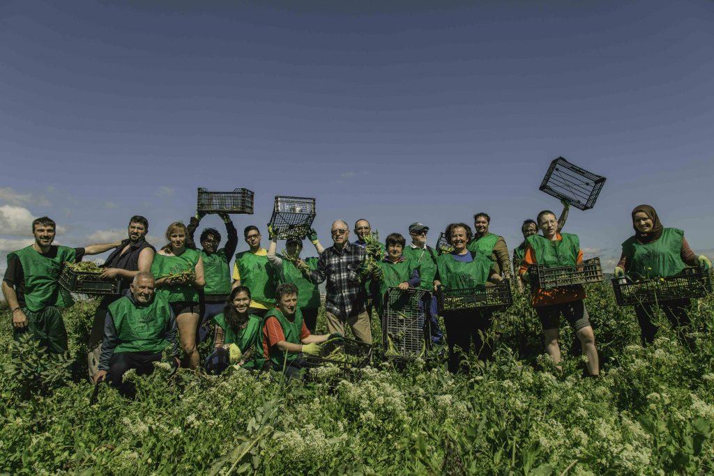 Espigoladors: el aprovechamiento alimentario como forma de terminar con la exclusión social