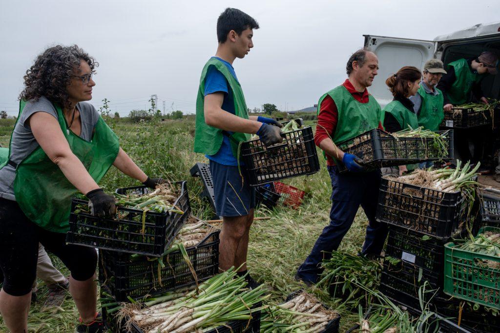 Aprovechamiento alimentario para luchar contra la exclusión social