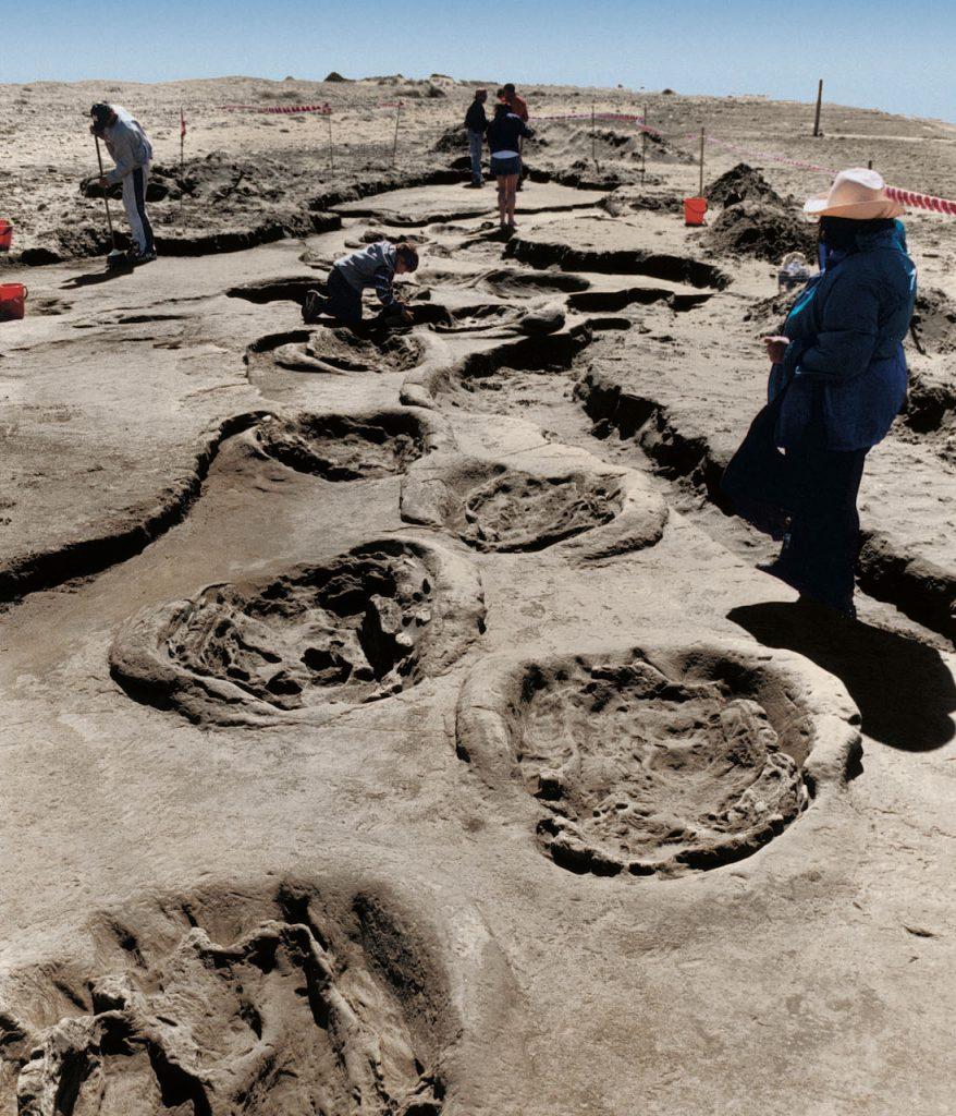 En Pehuen Co, los yacimientos de huellas fósiles atraen al turismo científico