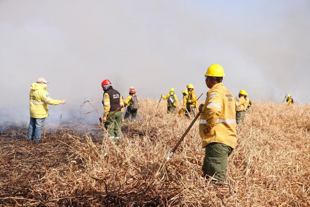 Los brigadistas de Parques Nacionales que combaten los incendios forestales y una deuda histórica saldada