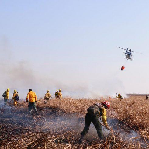 Fuego en los humedales: no basta con apagarlos con brigadistas, aviones hidrantes, etc.