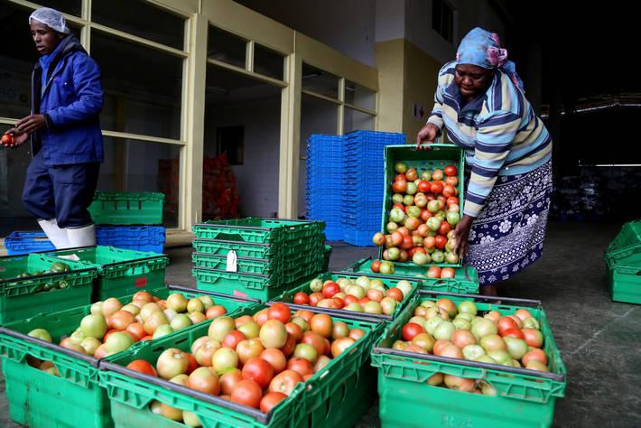 El año 2021, declarado de las Frutas y las Verduras para la nutrición humana