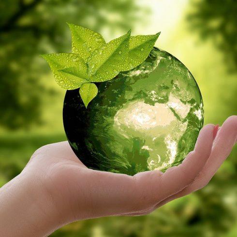 El mundo de la sostenibilidad se debe enseñar desde el preescolar para cambiar hábitos de vida