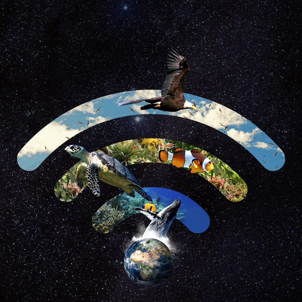 Un planeta saludable: el sábado 27, otra vez la Hora del Planeta