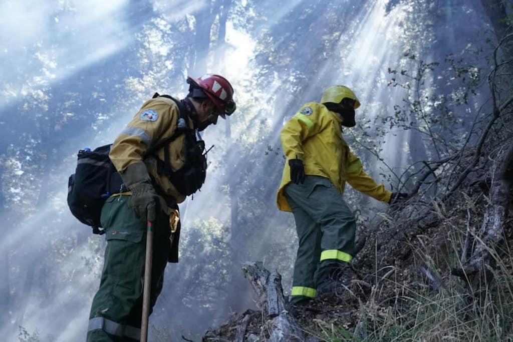 Incendios en la Argentina y sus consecuencias en la Naturaleza; informe a marzo 2021