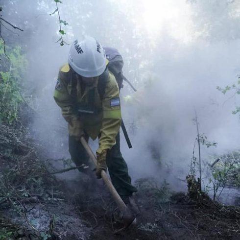 Incendios en la Naturaleza, y sus consecuencias, marzo de 2021 en la Argentina