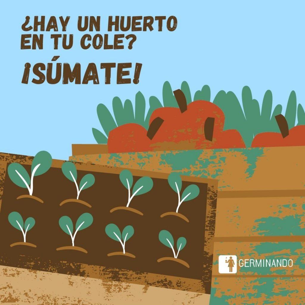 En Madrid, hay  ya 40 huertos escolares sostenibles en centros educativos del Ayuntamiento de Madrid, para avanzar en el cumplimiento de los ODS con vistas a 2030