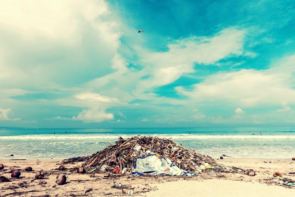 Guía de delitos ecológicos, reeditada 25 años después por Ecologistas en Acción