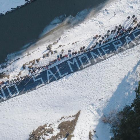 Tierra del Fuego le dijo NO a la salmonicultura