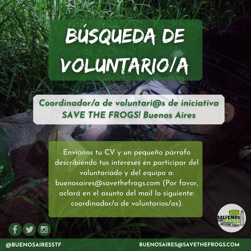 Salvemos a las ranas! Buenos Aires busca voluntarios para preservar a los anfibios de las costas argentinas