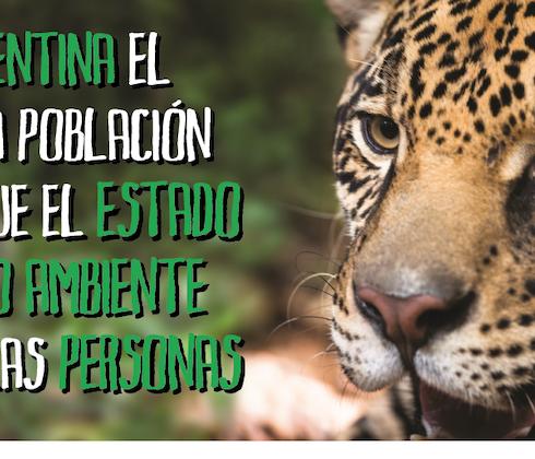 La encuesta de opinión pública que encargó la Fundación Vida Silvestre sobre el cuidado del ambiente arrojó resultados muy favorables de la ciudadanía