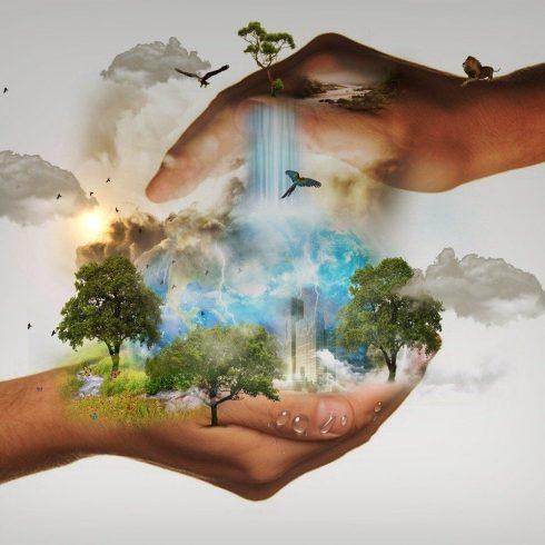 ¿Qué signfica ser un ambientalista? Columna de Opinión de Chantal Chalita