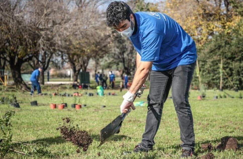 En su planta de Pacheco, Ford Argentina destinó un predio a bosque nativo con especies originarias del pastizal pampeano y la selva ribereña